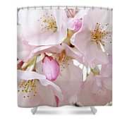 Tree Blossoms Art Prints Canvas Pink Spring Blossoms Baslee Troutman Shower Curtain