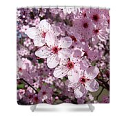 Tree Blossoms Pink Spring Flowering Trees Baslee Troutman Shower Curtain