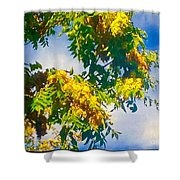 Tree Branch With Leaves In Blue Sky Shower Curtain