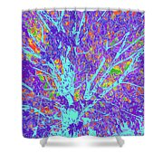 Tree Branches 10 Shower Curtain