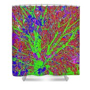 Tree Branches 7 Shower Curtain