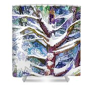 Tree Branches Covered By Snow In Winter Shower Curtain