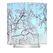Tree Branches Reaching For Heaven 2 Shower Curtain