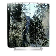 Tree Breath Shower Curtain