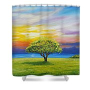 Tree By The Beach Shower Curtain