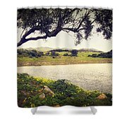 Tree By The Lake Shower Curtain