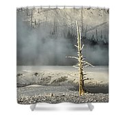 Tree By The Thermal - Yellowstone Shower Curtain