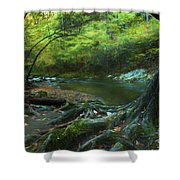 Tree By Water Shower Curtain