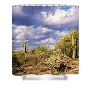 Tree Cactus Shower Curtain