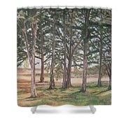Tree Collection Shower Curtain