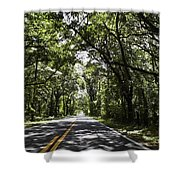 Tree Covered Road Shower Curtain