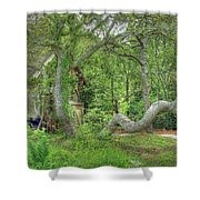 Tree Curves Two Shower Curtain