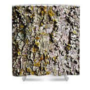 Tree Trunk Detail Shower Curtain