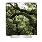 Tree Drama Shower Curtain