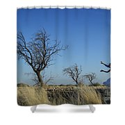Tree Echo Shower Curtain