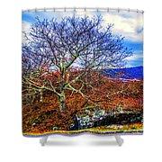 Tree Fan Shower Curtain