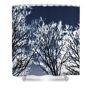Tree Fantasy 2 Shower Curtain