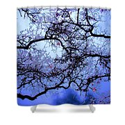 Tree Fantasy In Blue Shower Curtain