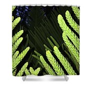Tree Fingers Shower Curtain