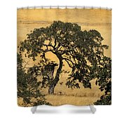 Tree Formation 2 Shower Curtain