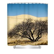 Tree Formation 3 Shower Curtain