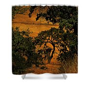Tree Formation Shower Curtain