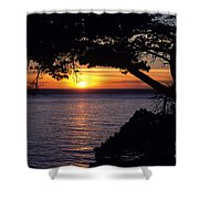 Tree Framing Seascape Sunset Shower Curtain by Ali ONeal - Printscapes