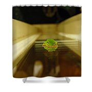 Tree Frog II Shower Curtain