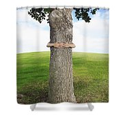 Tree Hugger 3 Shower Curtain