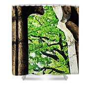 Tree In A Medieval Frame Shower Curtain