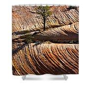 Tree In Flowing Rock Shower Curtain