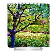 Tree In Spring Shower Curtain