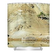 Tree In The Desert Shower Curtain