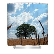 Tree In The Field Shower Curtain