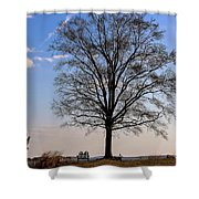 Tree In The Morning Light Shower Curtain
