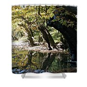 Tree In The River Shower Curtain