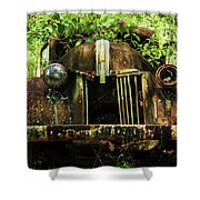 Tree In Truck Shower Curtain
