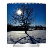 Tree Into Sun On A Winter Snowy Afternoon Shower Curtain