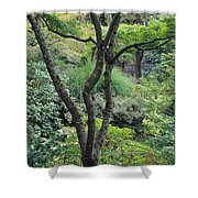 Tree Japanese Garden Shower Curtain