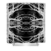 Tree Kaleidescope  Shower Curtain