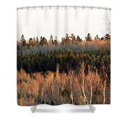 Tree Layer Cake Shower Curtain