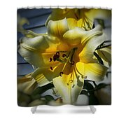 Tree Lily Shower Curtain