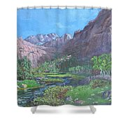 Tree Line Oasis  Shower Curtain