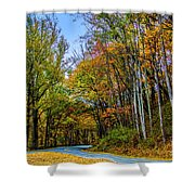 Tree Lined Road Shower Curtain
