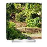 Tree Lined Steps Shower Curtain