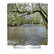 Tree-lined - Swollen River Dove At Thorpe Shower Curtain