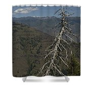 Tree Look Out Shower Curtain