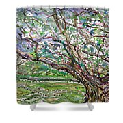 Tree, Loom Of Light And Life Shower Curtain