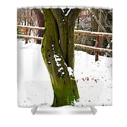 Tree Lovers Shower Curtain