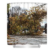 Tree Meets Hurricane Sandy By The Fair Lawn Nj Post Office Shower Curtain
